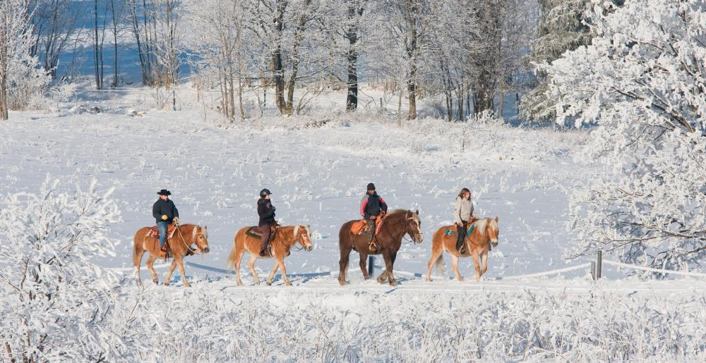 A group of riders in the snow