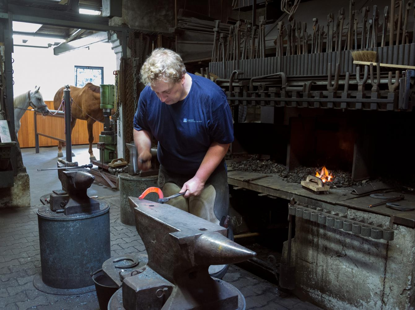 The German farrier Christoph Schweppe forging a horseshoe