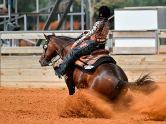 A reining contest